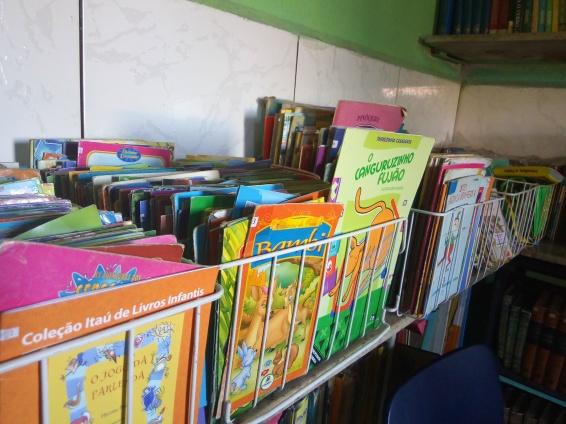 Em três meses a biblioteca arrecadou mais de 1700 exemplares de livros (foto: Marianna Pontillo)